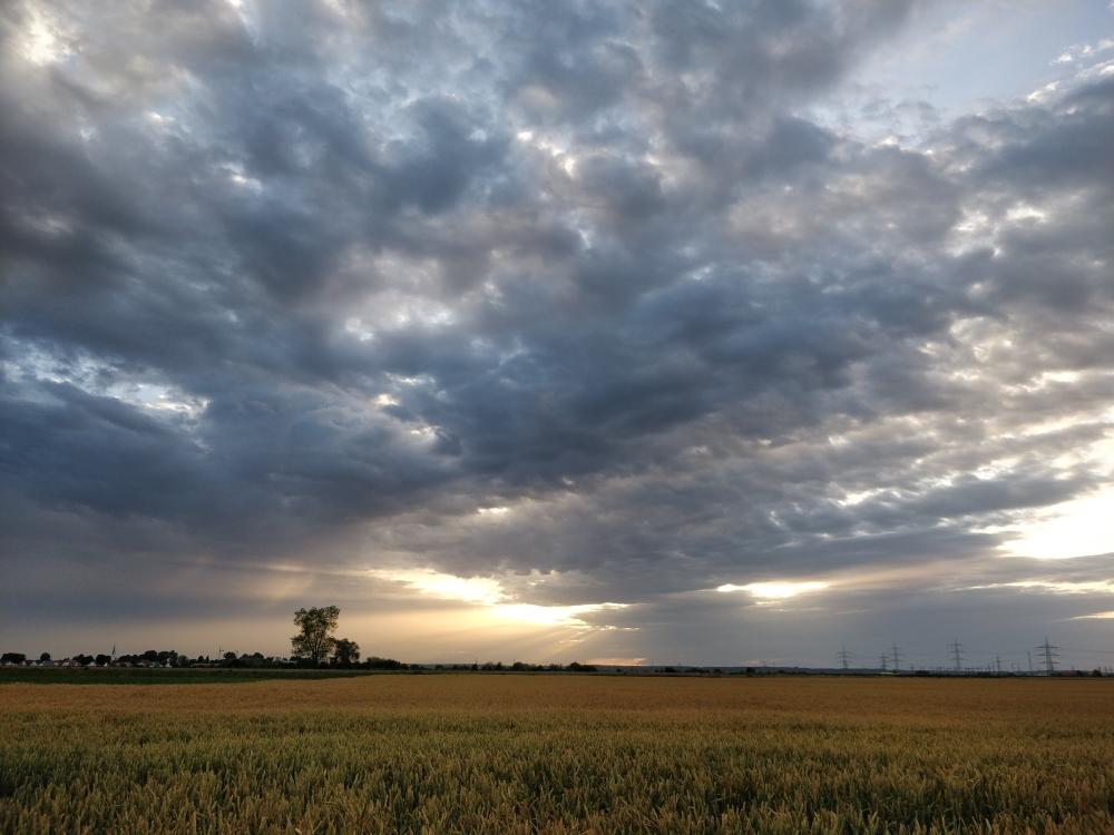 oneplus5-image-landscape-nerdweibweb
